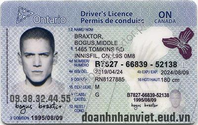 Đổi bằng lái xe Canada sang Việt Nam