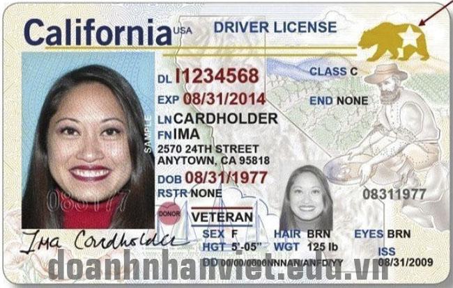 Đổi bằng lái xe Mỹ sang bằng lái xe Việt Nam