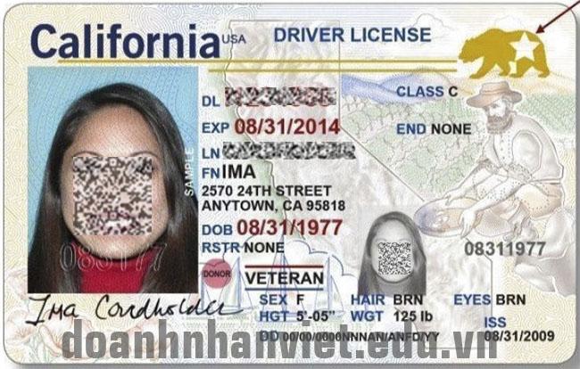 Đổi bằng lái xe Mỹ sang Việt Nam ở đâu